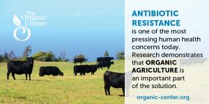 OrganicAgriculturePartOfTheSolution